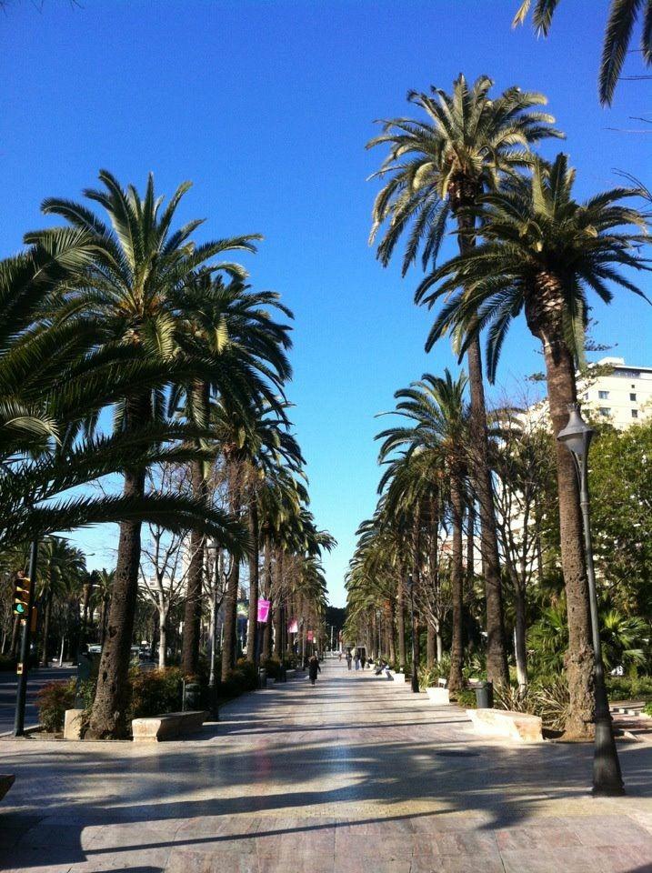 Paseo del Parque, Málaga