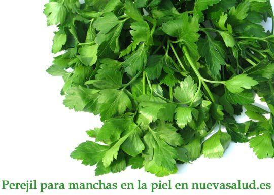 97 best images about Plantas medicinales on Pinterest