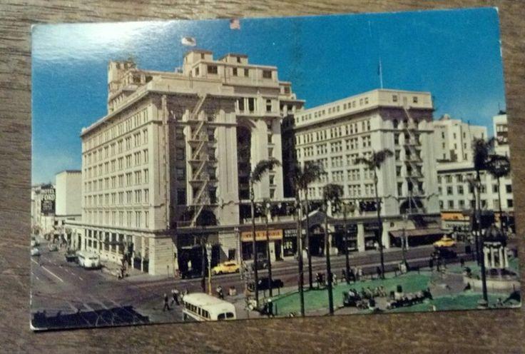 hotels san diego ca in the basement panda bears basements postcards