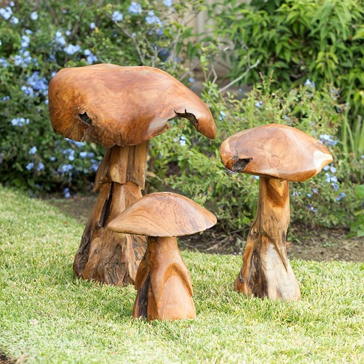 1000 Ideas About Wild Mushrooms On Pinterest