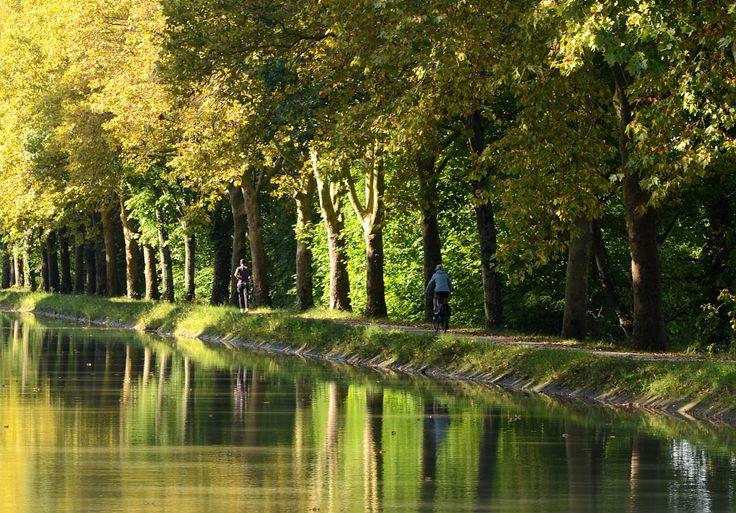 Balade à vélo le long du Canal du Midi - Par CRT Midi-Pyrénées / Patrice THEBAULT #TourismeMidiPy #MidiPyrenees #France  #Randonnée #vtt #velo #canaldumidi