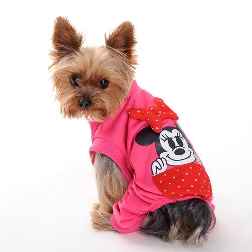 Animals in Clothes: a collection of Animals and pets ideas to try ...