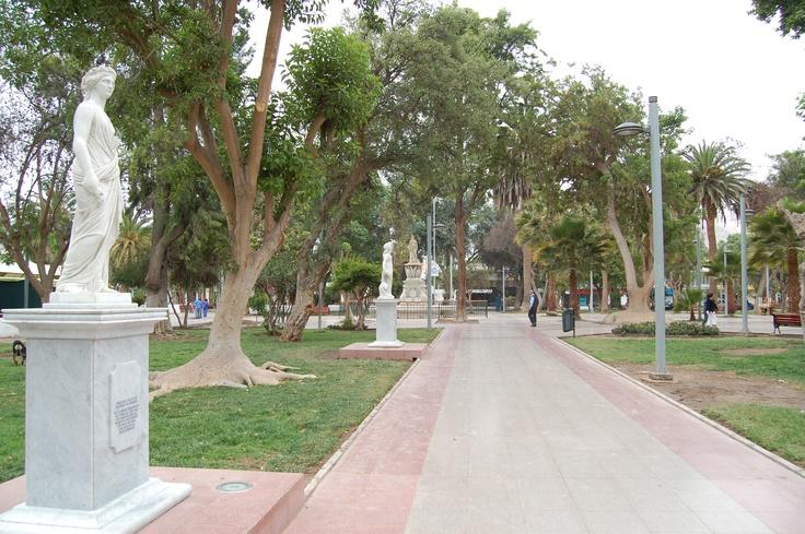 Plaza de Copiapó. III Región de Atacama
