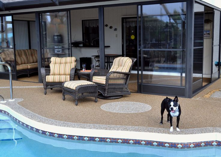 We have the products to decorate and improve any concrete surface...dog not included.