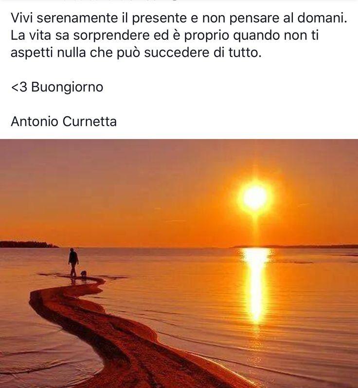 Antonio Curnetta