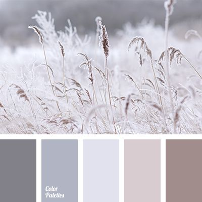 """dusty"" beige, beige and gray, brown and gray, coffee colour, colour of cream, colour of paints for a house, colour palette for interior, cream colour, gray and beige, gray beige, gray-brown, light gray, monochrome beige"