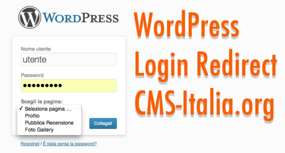 wordpress login redirect
