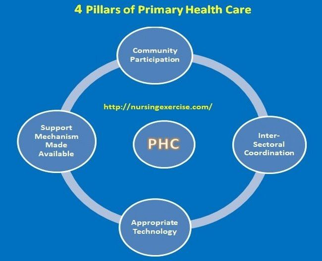 Four Major Pillars Of Primary Health Care System Phc Health Care Healthcare System Nursing Notes