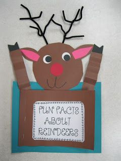 reindeer facts book