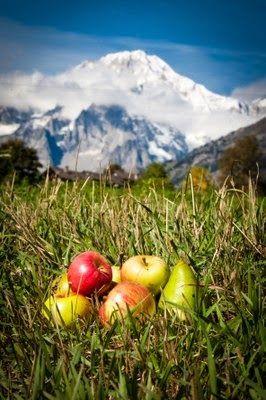 """Valle d'Aosta - sagre autunnali - Antey Saint-André """"Mostra Mercato Mele Vallée"""" - tre giorni di eventi dedicati al frutto simbolo della Regione, alla mela delle Valli del Monte Bianco e del Cervino-Matterhorn, e ai suoi derivati"""