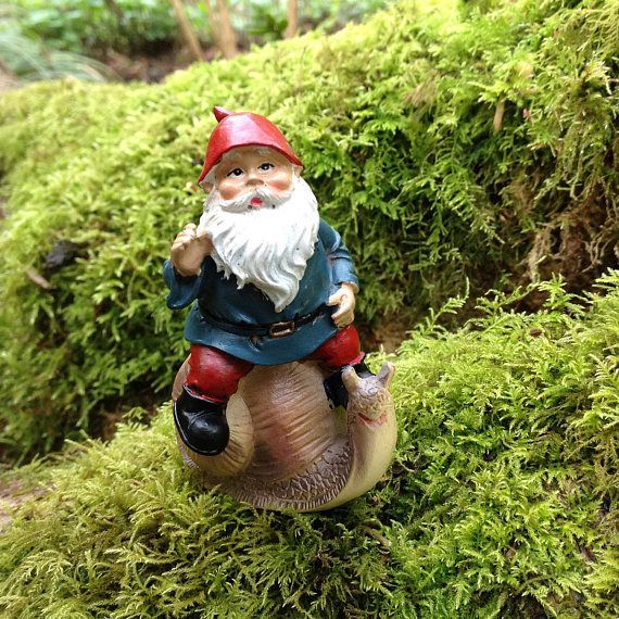 435 Best Elves Gnomes And Cute Trolls Images On