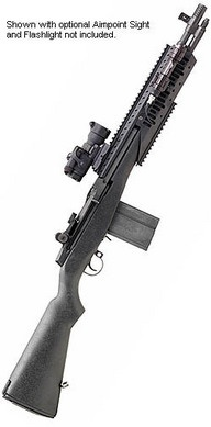 Option 1 for long range rifle.  Springfield Armory M1A Scout .308.