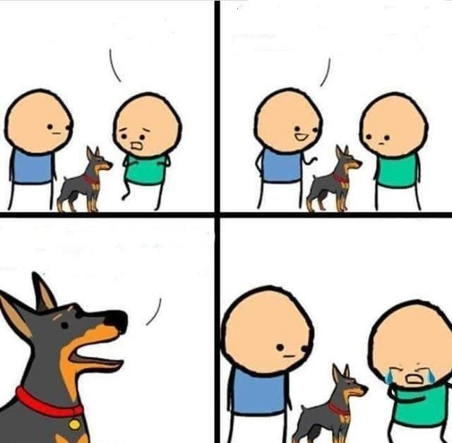 24 Dog Memes Cartoon Dog Hurt Comic Meme Generator Imgflip Why The Gop Twitter Couldn T Pull Off The This Is Fine Fu In 2020 Meme Template Create Memes Blank Memes