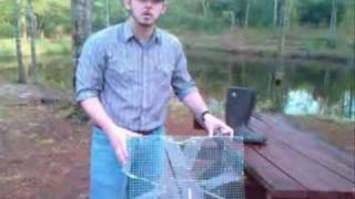 10 best images about fishing ideas on pinterest big for How to make a fish trap for big fish