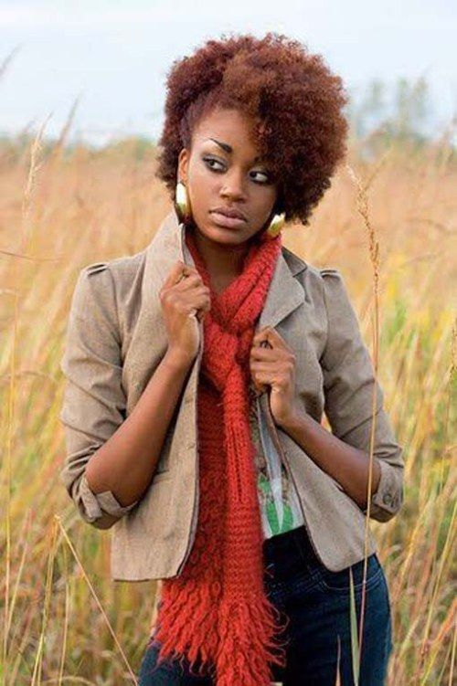 145 best Natural Hairstyle images on Pinterest | Natural hair ...