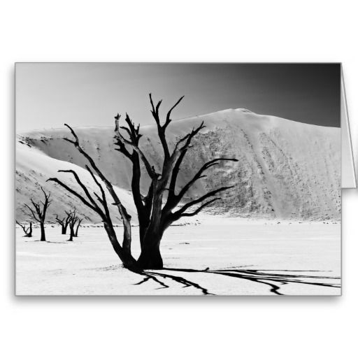Dead Vlei in desert landscape of Namib Karten