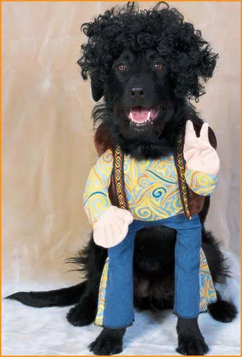 hippie dog costumes pet halloween costumes halloweencostumes4ucom - Halloween Costumes For Labradors