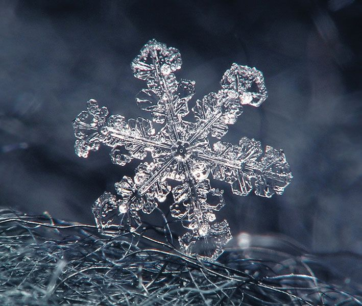 Solids, Liquids, and Gases - Investigate - Resource - 8817 - Image - Snowflakes - Britannica PATHWAYS: SCIENCE