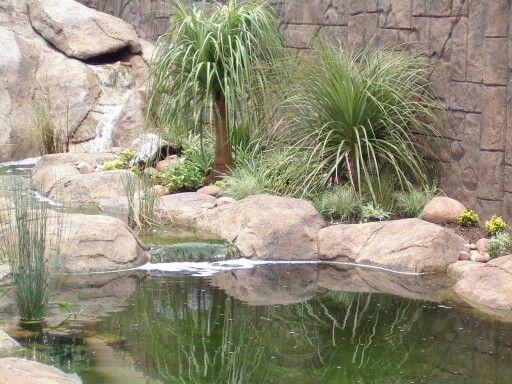 229 best south african gardens images on pinterest for Koi pond rocks