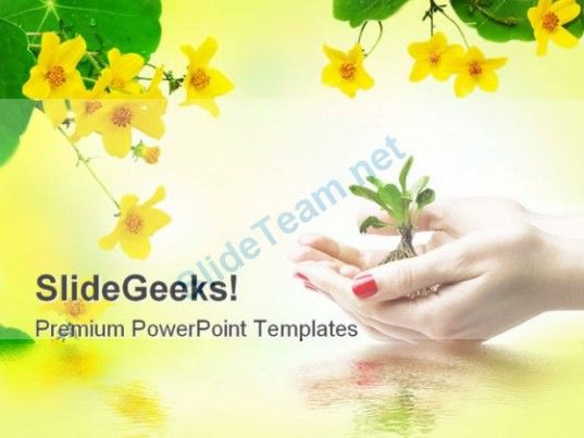 263 best Beach Powerpoint Templates Themes Backgrounds images on - spring powerpoint template
