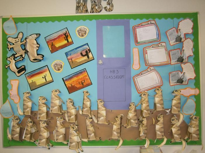 Meerkat Mail Displays | Briar Hill Infant School