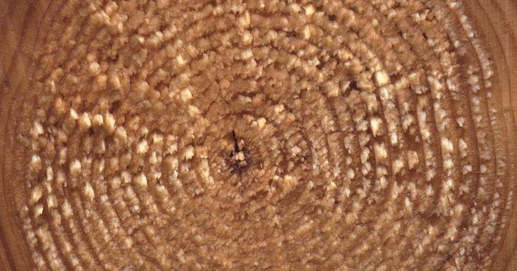Características de círculos concêntricos em geometria. Círculos concêntricos possuem seus centros no mesmo ponto. Por exemplo, os anéis em um tronco de árvore são, de certa forma, círculos concêntricos. Os círculos em uma placa de dardos também são concêntricos. Em aulas de matemática, círculos concêntricos são frequentemente usados para testar o entendimento dos alunos sobre os conceitos de área, ...