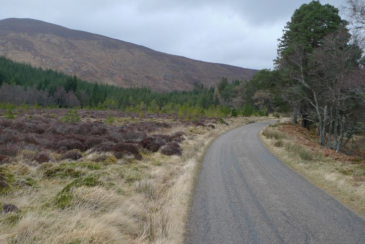 This road is near Croick, near Ardgay and Bonar Bridge in the Highlands