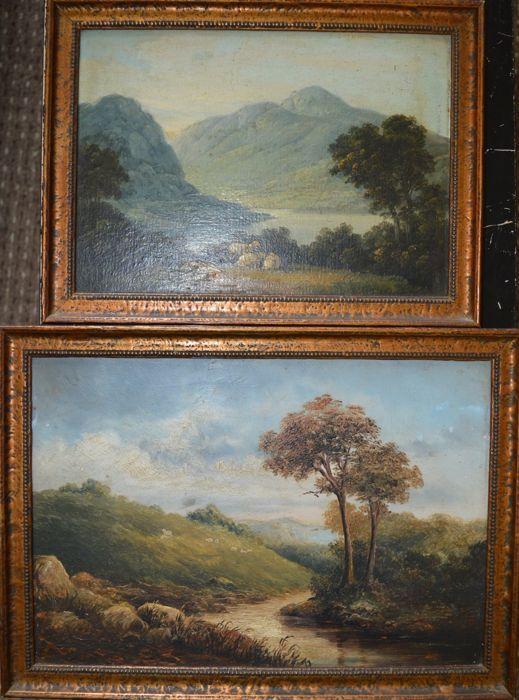 Onbekend (19de eeuw) - een paar meer en de bergen bekijkt met schapen  Ik ben aanbieden voor de veiling een heerlijke paar 19e eeuw olie op platen van platteland landschappen met schapen. Beide van dezelfde artiest in identieke frames.De schilderijen meten 32 x 22 en 26 x 19 cm. De frames meet 36 x 26 en 30 x 22 cm.De schilderijen zijn in goede eerlijke bestellen. Zie alle foto's voor nauwkeurige voorwaarde. Ze kon met een licht schoon. Één schilderij heeft vlokken ontbreekt die zijn…