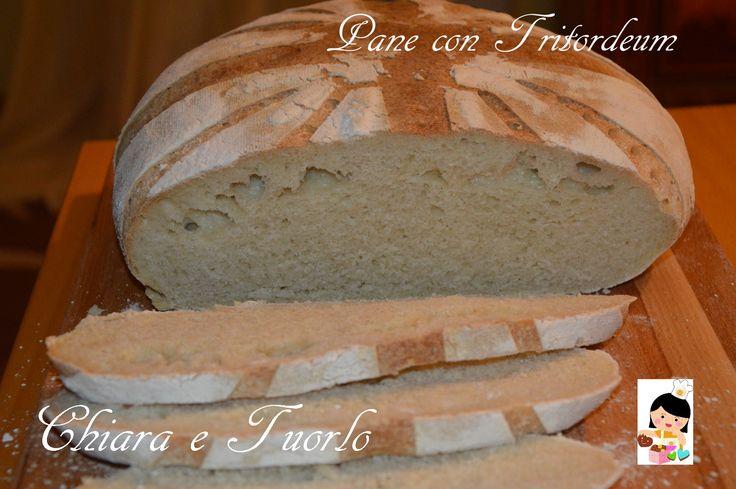 Pane con Tritordeum
