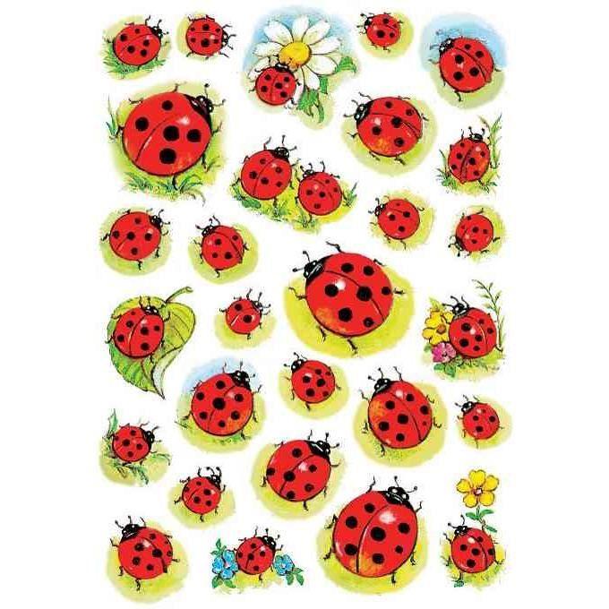 sticker-decor-coccinelles-et-fleur.jpg (680×680)