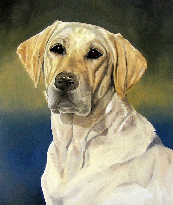 Oil Painting of a Lab