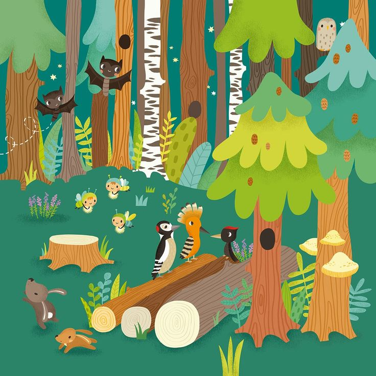 Maria Neradova Illustration: Last Illustration from the Forest Board Book