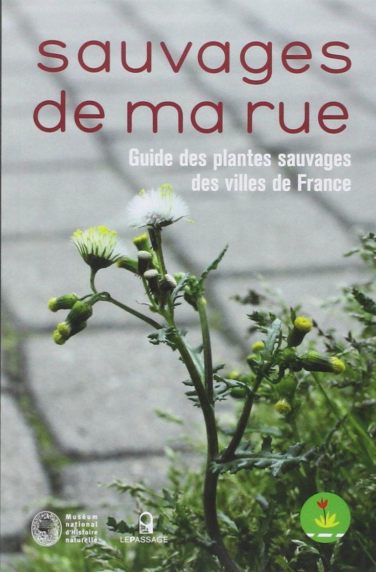 Sauvages de ma rue : Guide des plantes sauvages des villes de France - Nathalie Machon, Eric Motard, Collectif, Gérard Arnal