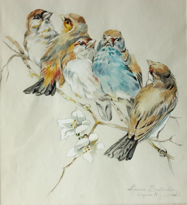 DELICATE antique FRENCH Original watercolor BIRDS от RueDesLouves