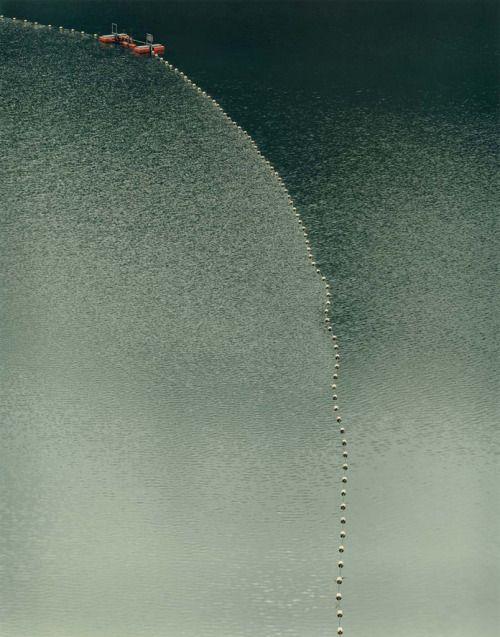 Your Moment of Zen, Toshio Shibata