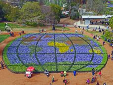 The world in flowers in Commonwealth Park for Floriade - Canberra Photo Gallery - The Trusted Traveller