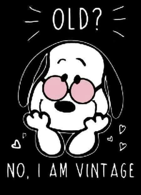 Old?  No I am Vintage. Snoopy