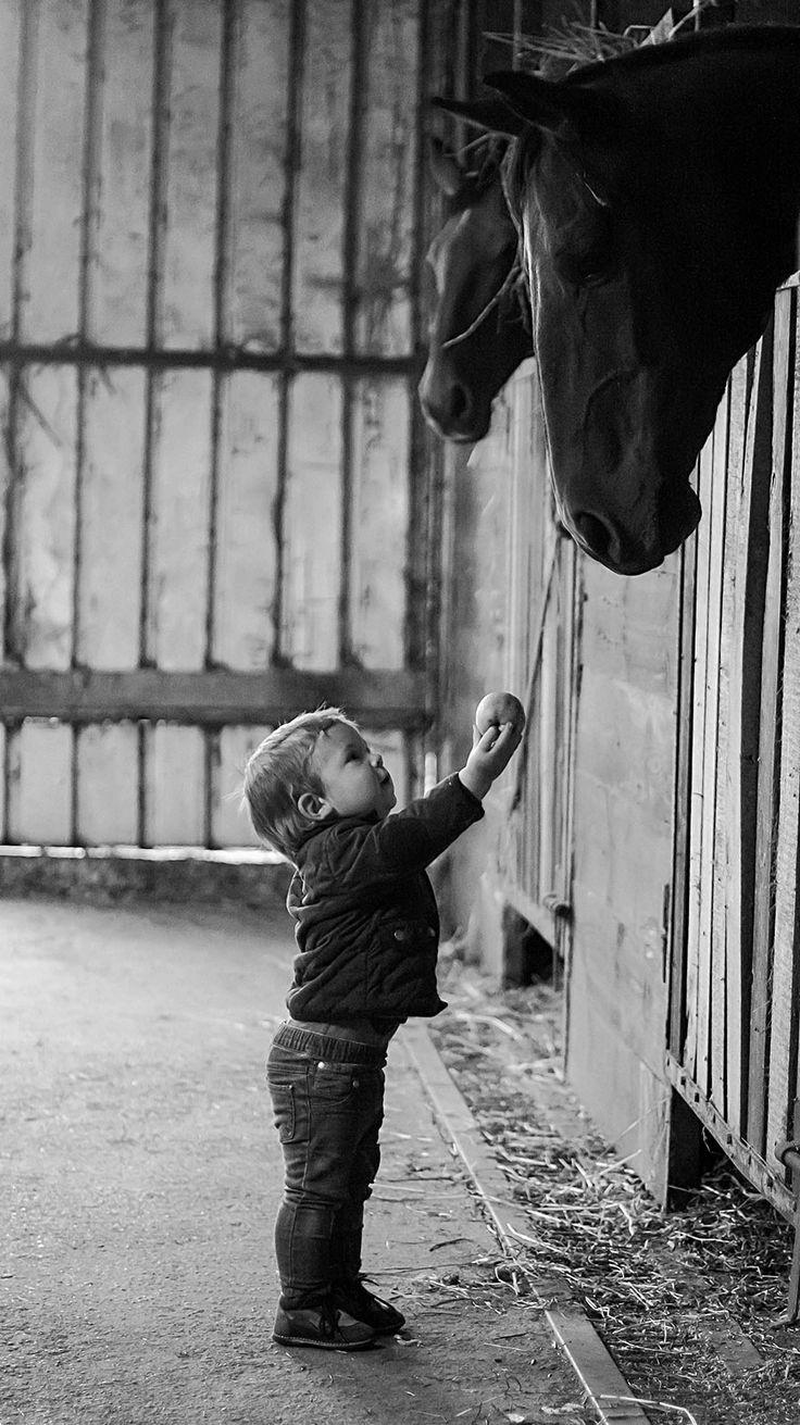:::: ✿⊱╮☼ ☾ PINTEREST.COM christiancross ☀❤•♥•* ::::kids-animals-family-photography-mother-agnieszka-gulczyiska-2