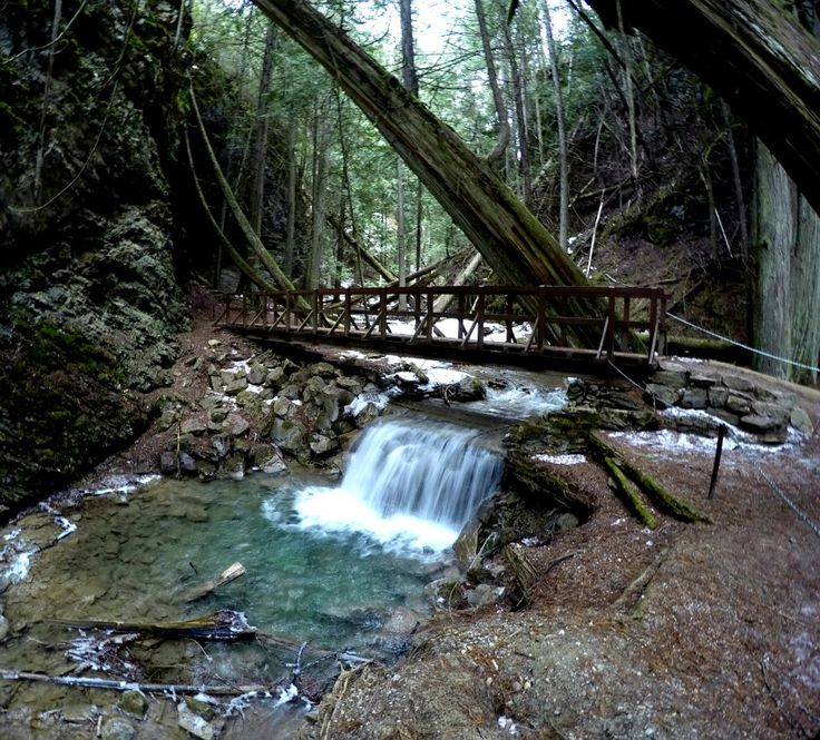 The Enchanting Trail to Margaret Falls