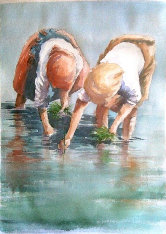 Joao Cabral           Planting rice..