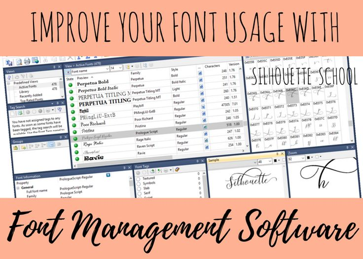 I get more questions about font management in Silhouette Studio than pretty much anything else. While Silhouette Studio's font management is rather limited in the current versions of the software, the