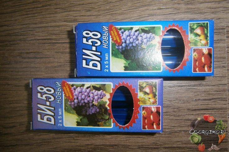 Би-58 новый – инструкция по применению препарата, как разводить, дозировка для огурцов, капусты, роз, комнатных растений, против колорадского жука, срок ожидания