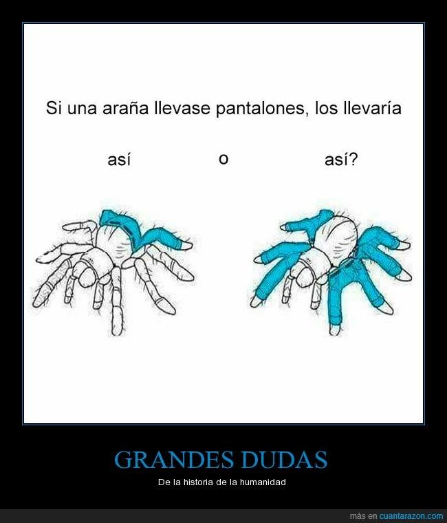 Si una araña llevase pantalones… (imperfecto del subjuntivo + condicional). Visit http://www.estudiafeliz.com for more memes organized by grammar points (and more content!) for Spanish learners and teachers!