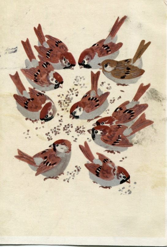 by E. Charushin, 1967 (His eye is on the sparrow........)