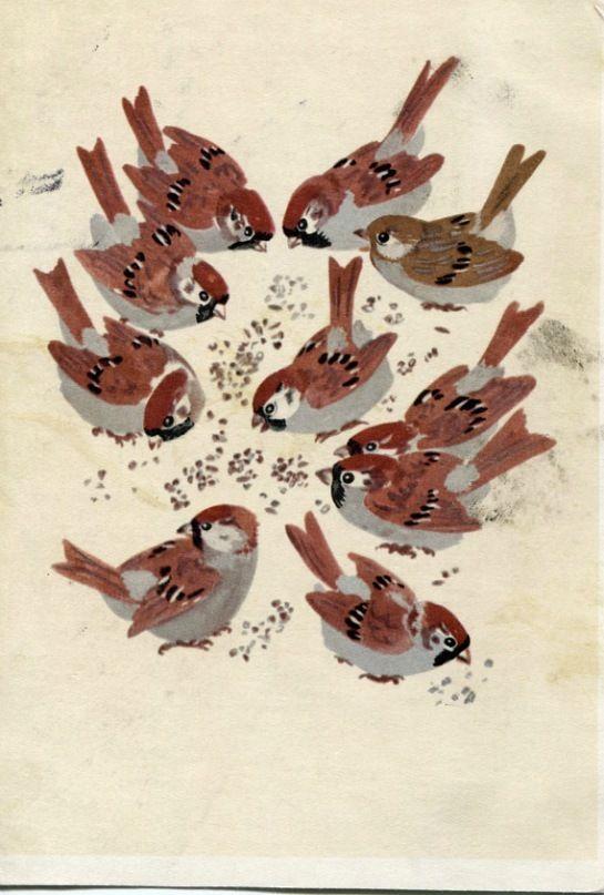 Soviet postcard by E. Charushin, 1967