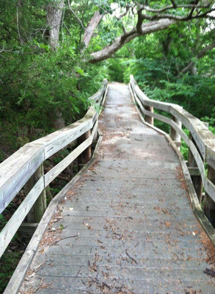 2. Cedar Ridge ADA Trail at Tuttle Creek (Manhattan) hikes in Kansas
