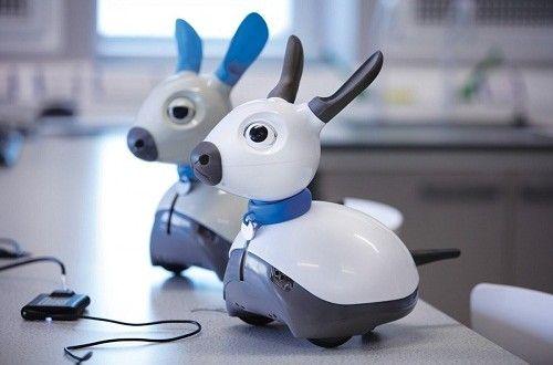 Robots can be the Protector of the Elderly #miro #roboticdog #SebastianConranAssociates
