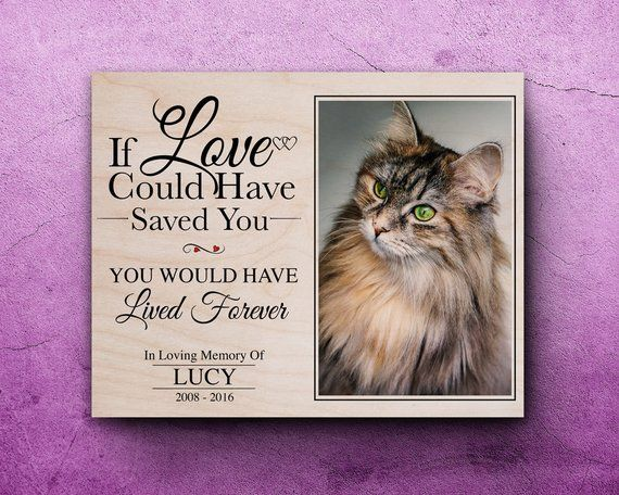 Pet Loss Gifts, Cat Loss, Cat Memorial, Loss Of Cat, Cat