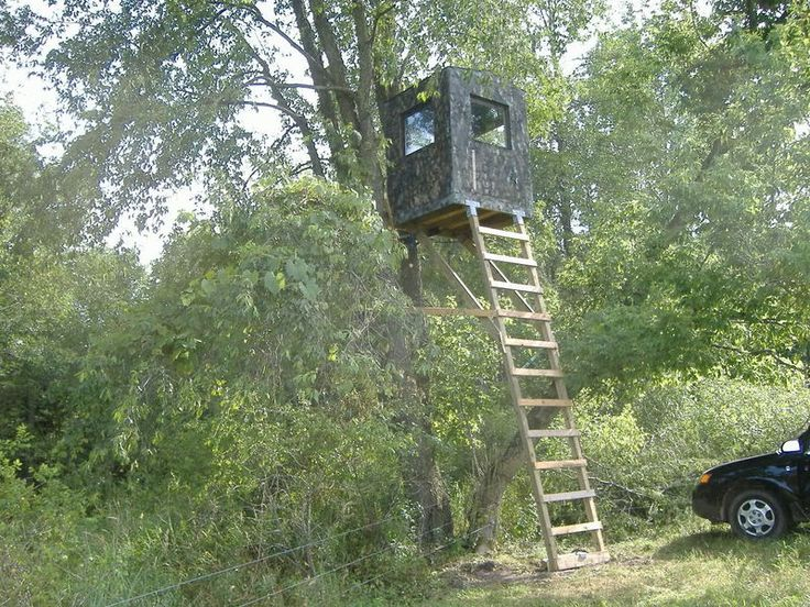 Homemade Deer Stands The Deer Run The Field Edge To Get