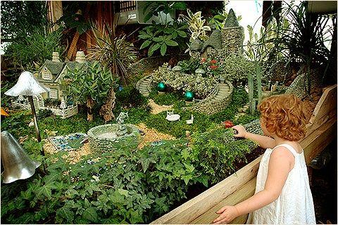 Миниатюрный сад для фей …